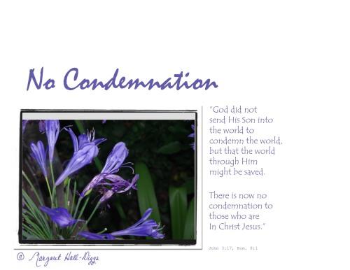 No Condemnation3